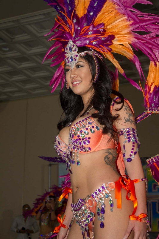 Toronto Caribbean Carnival Launches Brand New Website